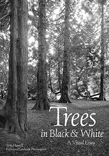 Trees-Black-and-White book