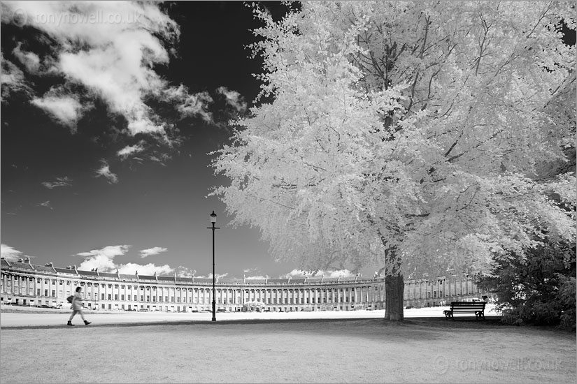 Royal Crescent (Infrared Camera, turns foliage white)