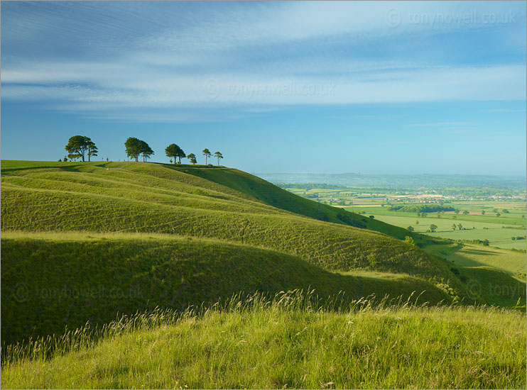 Roundway Hill
