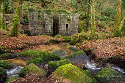 Kennall-Vale-Gunpowder-Mill-Cornwall