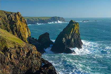 Lion-Rock-The-Lizard-Kynance-Cove-Cornwall