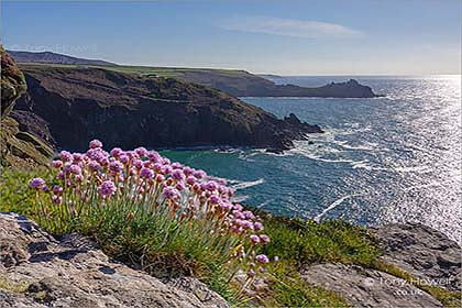 Zennor-Thrift-Gurnards-Head-Cornwall