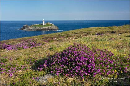 Godrevy-Lighthouse-Heather-Cornwall