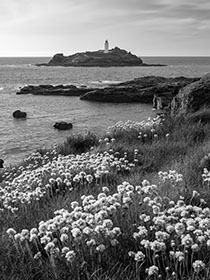 Godrevy-Lighthouse-Thrift-Cornwall