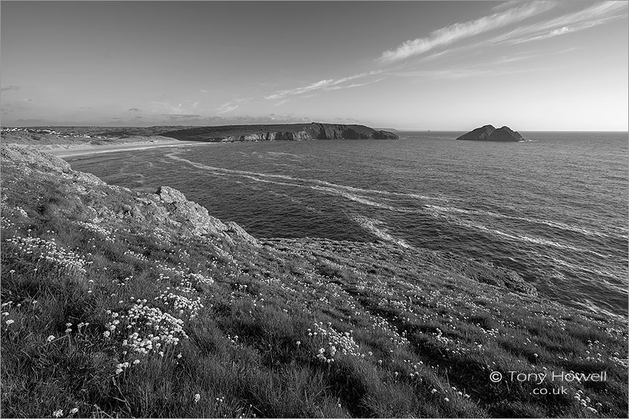 Holywell Bay, Thrift