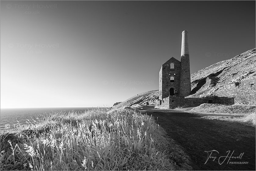 Wheal Coates, Infrared Camera (makes foliage turn white)