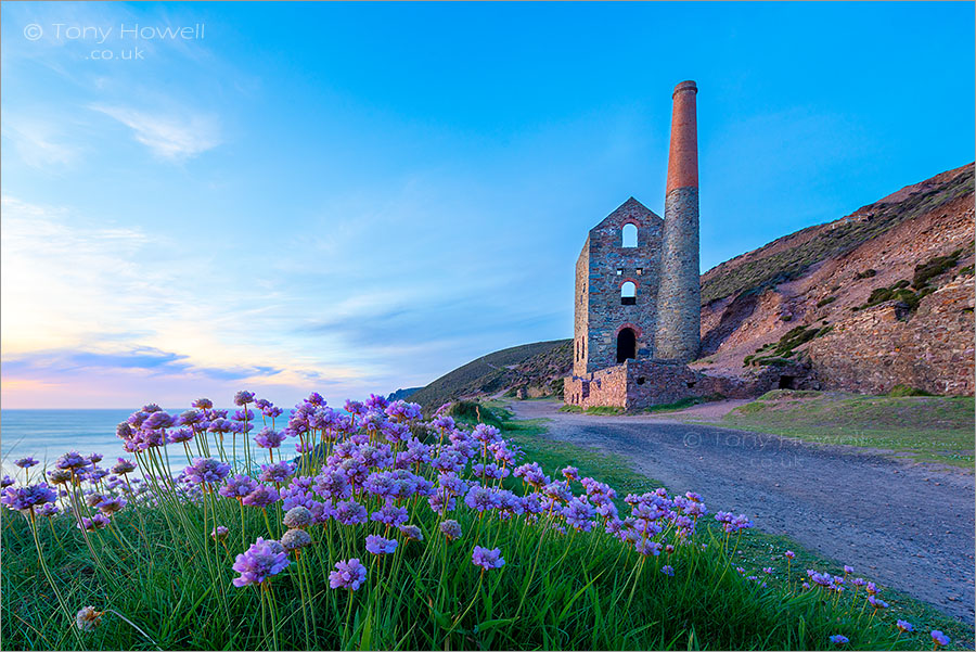 Wheal Coates, Thrift