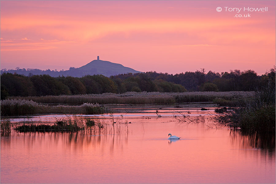 Glastonbury Tor, Dawn, from Shapwick Heath